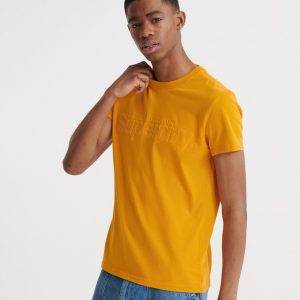 t-shirt superdry core suede